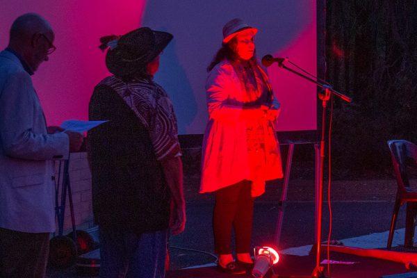 Vivienne Hansen on stage. Image Credit: Geoff Scott