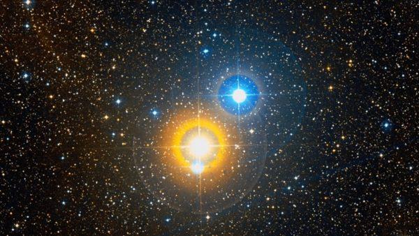 Albireo. Image Credit: Palomar Observatory/STScI/WikiSky