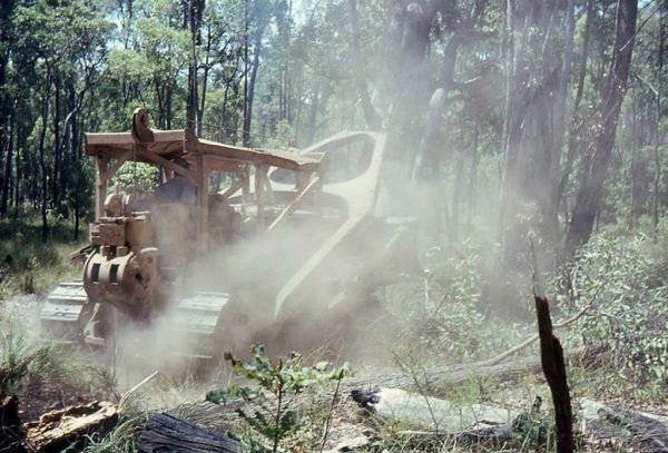 Clearing of the land where the Observatory would be built in Bickley. Image Credit Perth Observatory