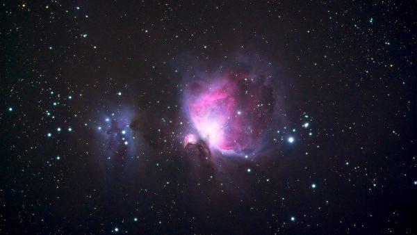 The Orion Nebula (M42). Image Credit: Roger Groom