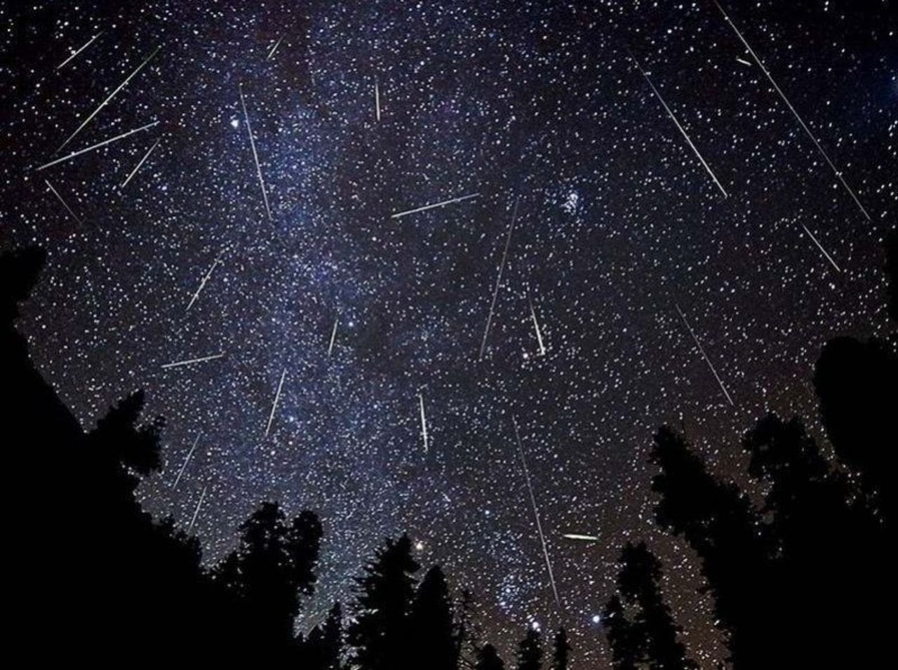 Orionids Meteor Shower Over A Forest