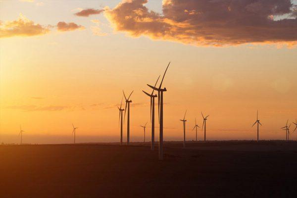 Wind turbines at Walkaway Wind Farm. Image Credit: Infigen